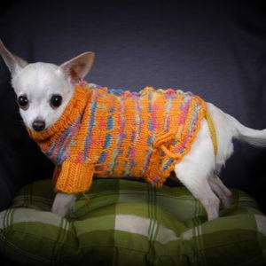 одежда для собак купить, описание, вязание на заказ