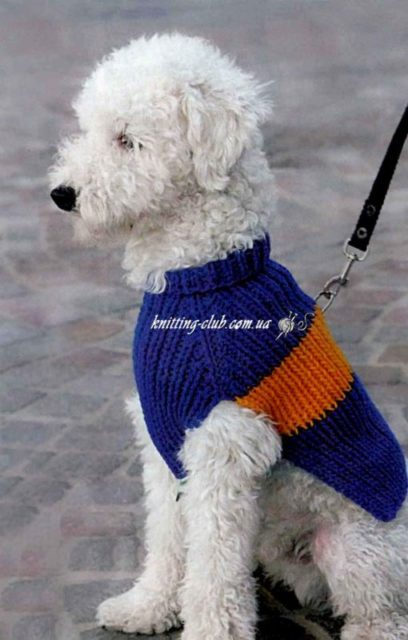 Комбинезон для собаки - Футбольный фанат, вязаный комбинезон для собаки, одежда для собак, вязаная одежда для собак, вязаная одежда для собак на заказ, как связать одежду для собаки