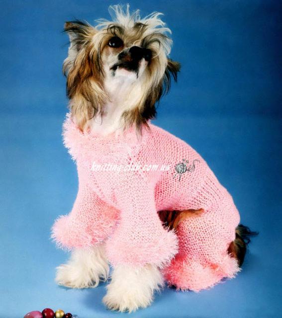 Розовый комбинезондля Китайской Голой Хохлатой Собачки, вязание для собак, одежда для собак, вязаная одежда для собак, как связать свитер для собаки, одежда для собак на заказ, вязаная одежда для собак на заказ,комбинезон для собачки, как связатькомбинезон для собаки.