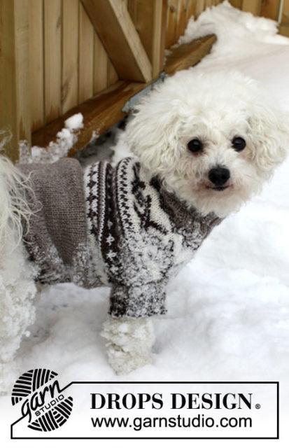Свитер для маленькой собачки, вязание для собак, одежда для собак, вязаная одежда для собак, как связать свитер для собаки, свитер снорвежским узором для маленькой собачки, одежда для собак на заказ, вязаная одежда для собак на заказ, свитер для спестрым узором для маленькой собачки, свитер для той-терьера, свитер для чихуахуа, свитер для бишона, одежкадлябишона.