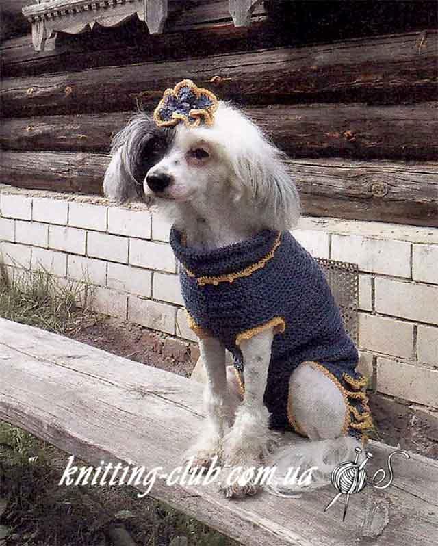 Кофта для собаки, вязание для домашних питомцев, вязание на заказ, как связать свитер для собаки